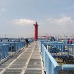 釣りデビューには大黒海釣り施設が便利!夏休み期間の平日が狙い目